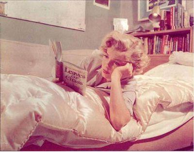 Marilyn2-1