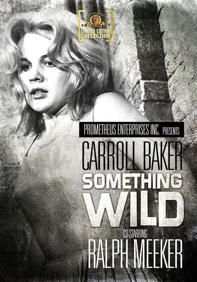 Something_wild
